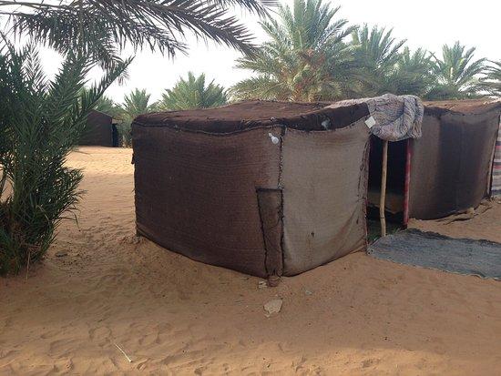 Sahara Garden: photo1.jpg