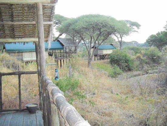 Ruaha National Park, Tanzania: Balcony view