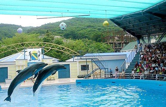 Aqua-Mir Dolphinarium