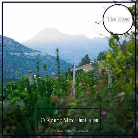Agia Fotia, Grekland: Ο Κήπος μας | Our Garden