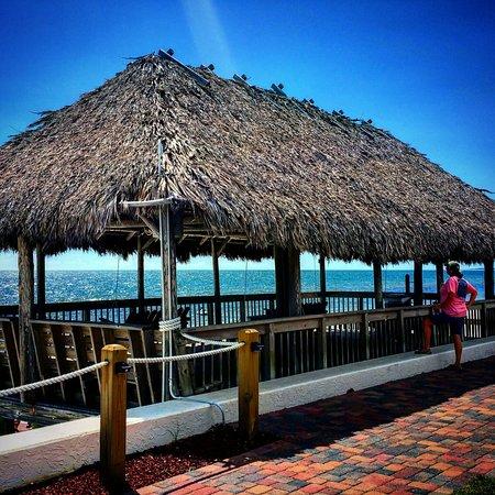 Cheap Hotels In Mexico Beach Florida