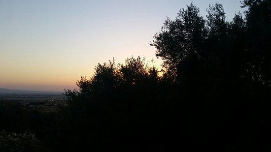Villamassargia, อิตาลี: Agriturismo S'Ortu Mannu