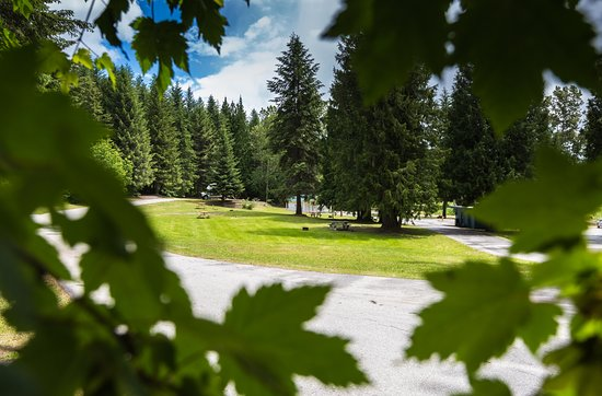 Rossland, Canadá: Looking from site 16 into the centre of Campground
