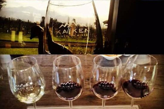 Kaiken Winery: Degustación