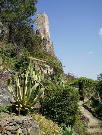 Roquebrun, Francia: Voici la tour médiévale.