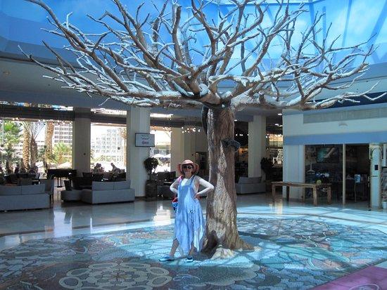 Crowne Plaza Hotel Eilat : Lobby