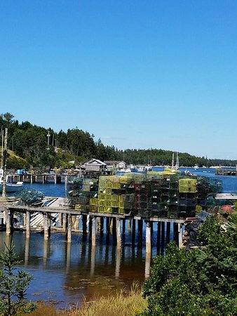 Bass Harbor, ME: Most worthwhile 'tour' I have ever taken. Scenic, educational, delicious, a great value. Eli is