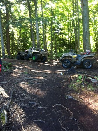 Dwight, Canada: Our ATVs