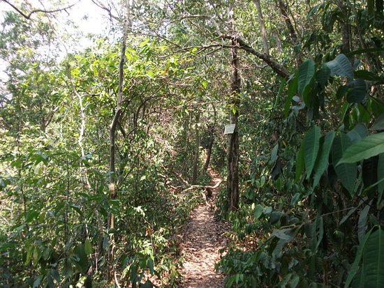 Kep, Cambodja: View of the path
