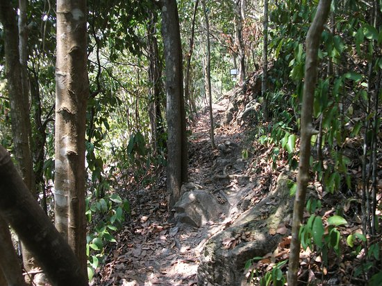 Kep, Camboya: Woodland trail back to town