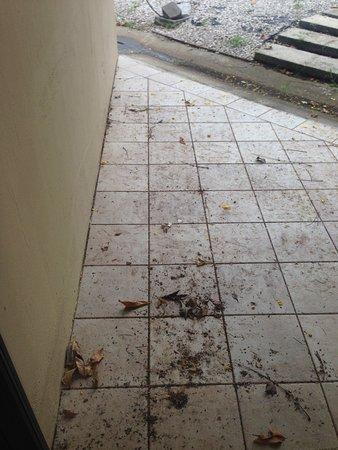 """Hotel La Flor de Itabo: Vista del """"balcon"""" de la habitación, se nota que nunca se les ocurrió barrer ni limpiar"""