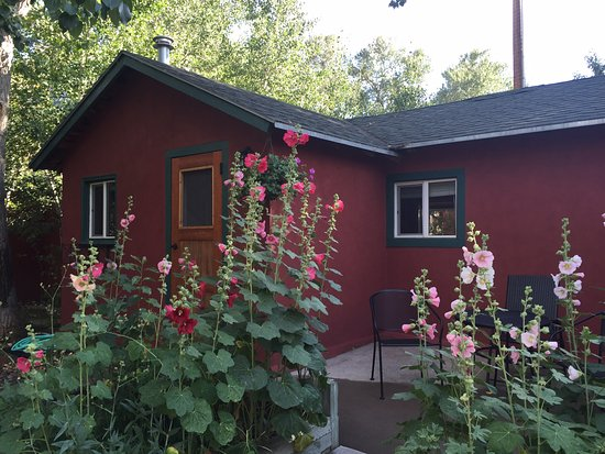 Elk Mountain, WY: The Kingfisher Cabin