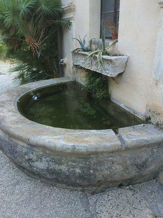 Sant' Antonio Image
