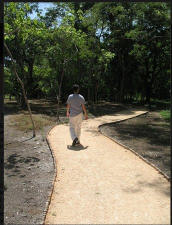 Quintana Roo, México: Sac-be walking path