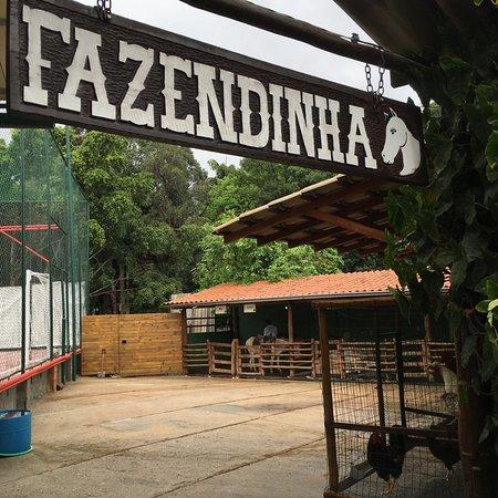 Sao Caetano do Sul: Fazendinha do Adventree.