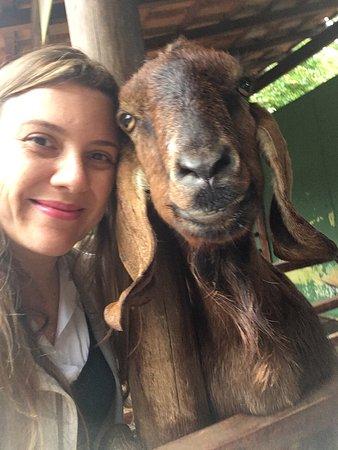 Sao Caetano do Sul: É uma cabra que se acha supermodel. Figuraça.