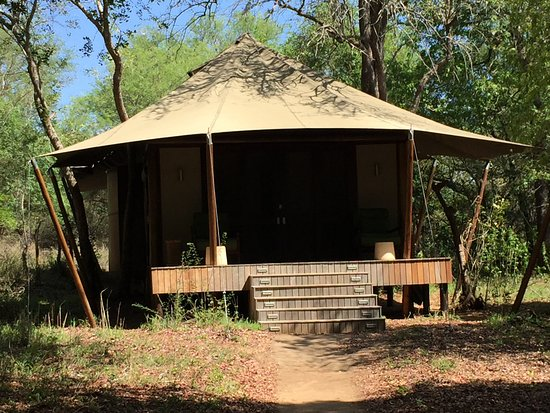 Ngala Private Game Reserve, Sudáfrica: Our private tented cabin