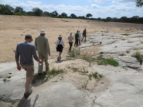 Ngala Private Game Reserve, Sudáfrica: We hiked back to camp for a true local experience
