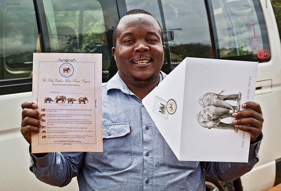 David Sheldrick Wildlife Trust: Make sure you sponsor one of the elephants