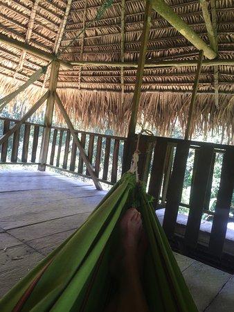 Cuyabeno Lodge: relaxen hoog in de uitkijkpost