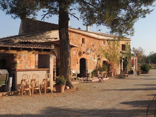 Yecla, Hiszpania: Villa Amor