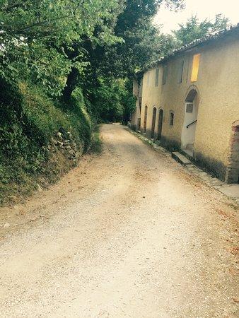 Agriturismo Borgo Spante: photo1.jpg