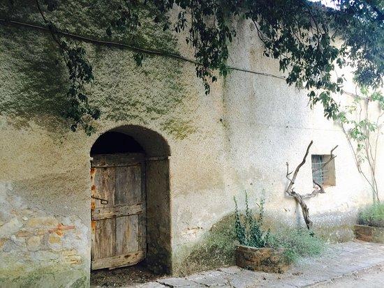 San Venanzo, Италия: photo4.jpg