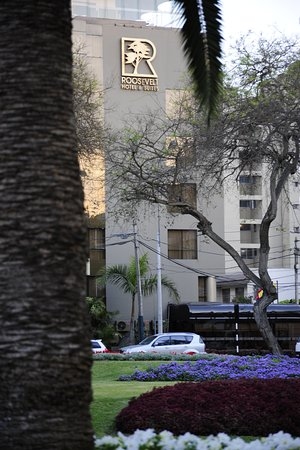 Roosevelt Hotel & Suites : Vista del Hotel Roosevelt desde el Parque