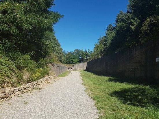Dinsheim-sur-Bruche, France : 20160824_150749_large.jpg