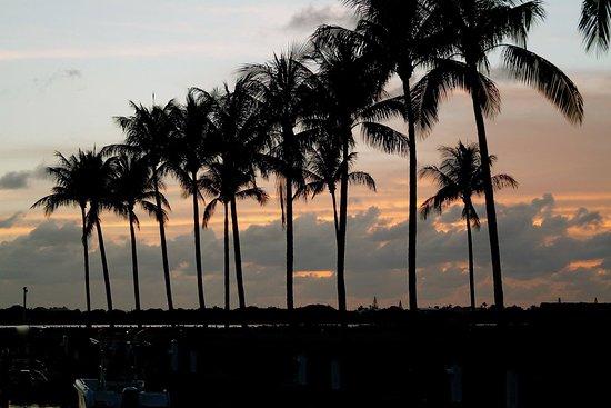 Indigo Reef Marina Homes Resort: photo7.jpg