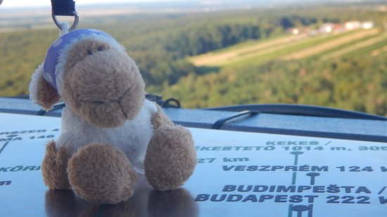 Lendava, Slovenia: She was travelling with us.