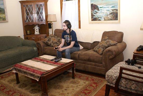 Madison, VA: Lower lounge -Guest playing x-box