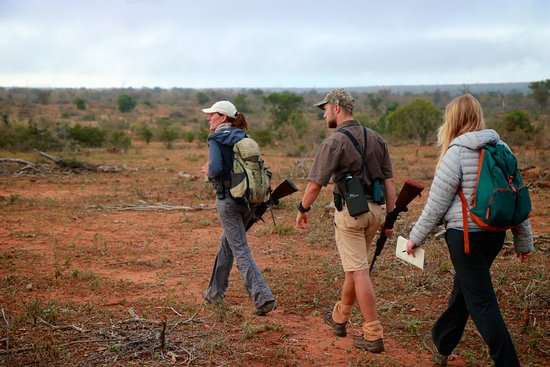 Gravelotte, Zuid-Afrika: Claudia leads a nature walk.