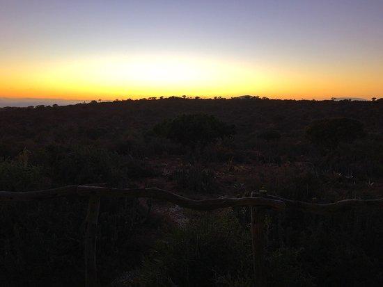 Greater Addo, جنوب أفريقيا: photo4.jpg