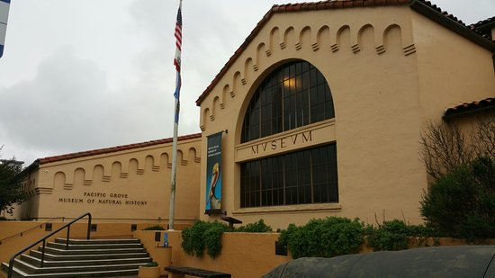 Pacific Grove Museum of Natural History: Just a few shots of outside and just inside.