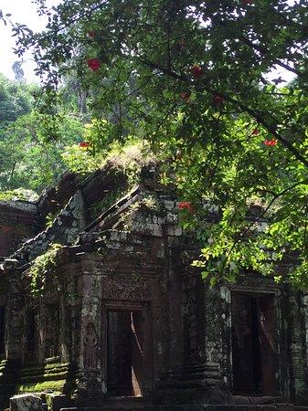 Champasak, Laos: Wat Phu