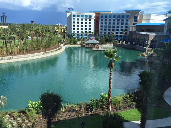 Room View Of The Lagoon Picture Of Loews Sapphire Falls