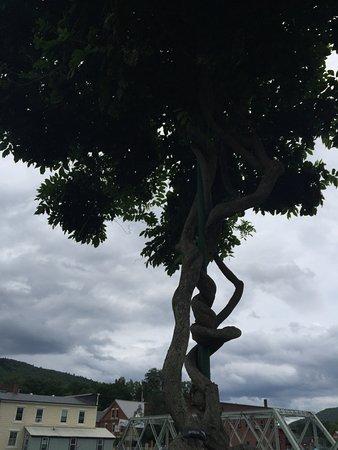 Shelburne Falls, MA: Interesting tree trunk.