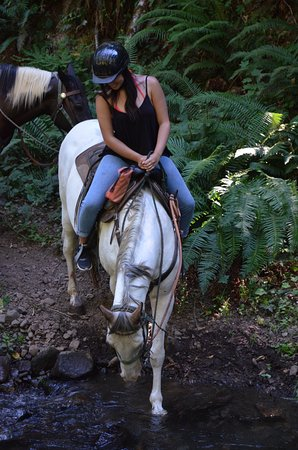 White Salmon, WA: Ride over creeks and watch your horse drink water.