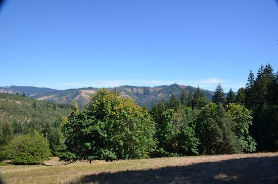 White Salmon, WA: Mountain views