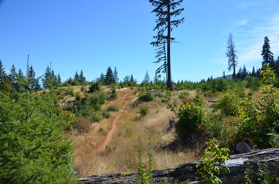 White Salmon, WA: Ride up and down hills and different terrain.