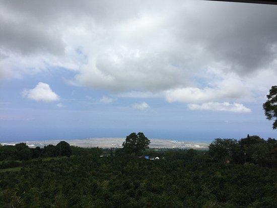 Holualoa, هاواي: photo0.jpg