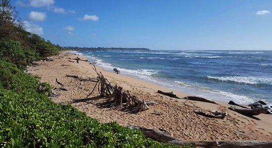 Wailua, Havai: Beach North