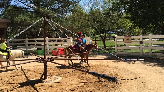 Aurora, IL: Pony rides- only 2 ponies at a time.