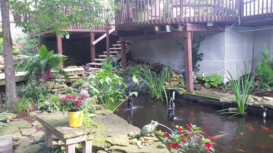Grand Rivers, KY: Koi pond.