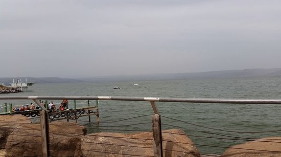 Rimonim Galei Kinnereth Hotel: הנוף מהבריכה לכנרת