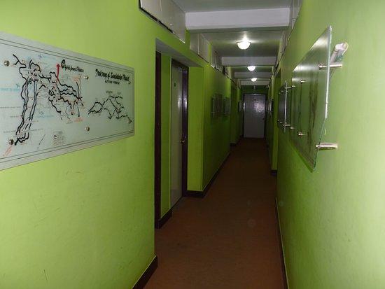 Hotel Anand Palace: Lobby