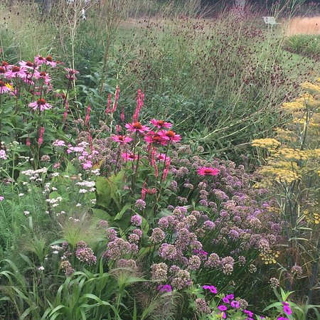 Henfield, UK : Mixed beds