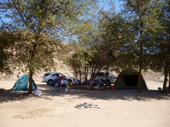 Richtersveld Transfrontier National Park, Afrique du Sud : One of the nicer campsites in the shade of thorn trees