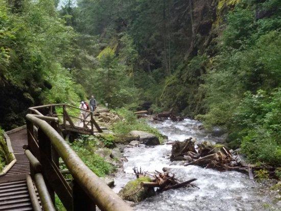 Flattach, Österreich: 20160818_100822_large.jpg